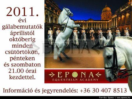 Epona_equestrain_academy