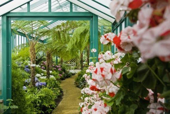 Royal-green-houses-flowers-wbtj.p.remy