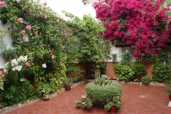 Cordoba_patio_barrionuevo