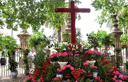 Cruces_de_mayo_14