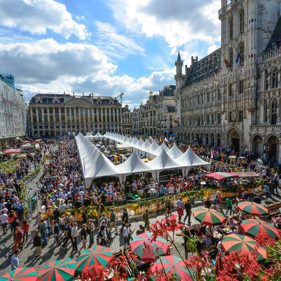 Festival-beer-Belgian