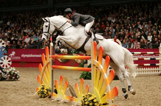 London_international_horse_show_4