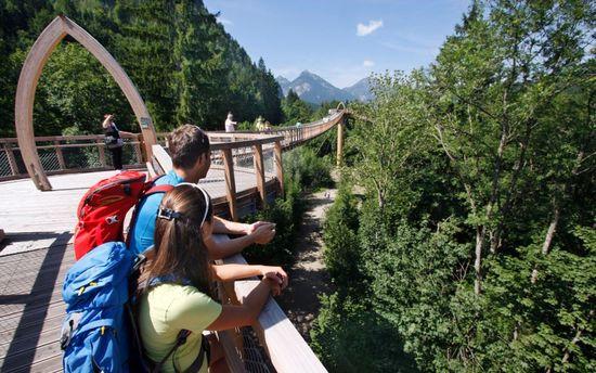 Aussicht-vom-baumkronenweg-im-walderlebniszentrum-ziegelwies