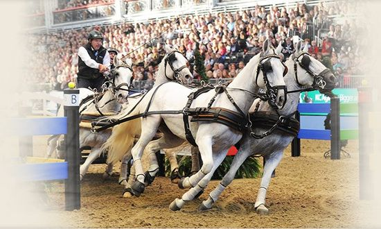London_international_horse_show_2