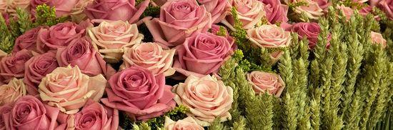 Flowertime_3