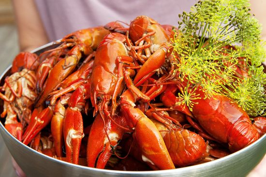 Cecilia_larsson-crayfish