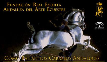 Andaluza_de_arte_ecuestre_2