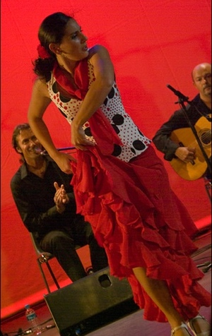 Flamenco_toulouse_2