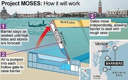 Venicemose_project